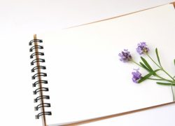 ガーデニングノート